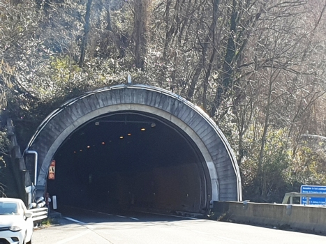Monte Piazzo Tunnel northern portal