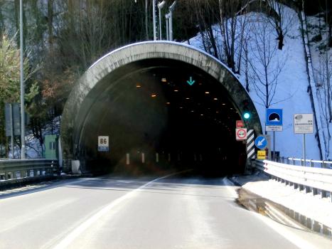 Mondadizza Tunnel northern portal