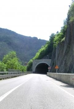 Tunnel Corteno Golgi