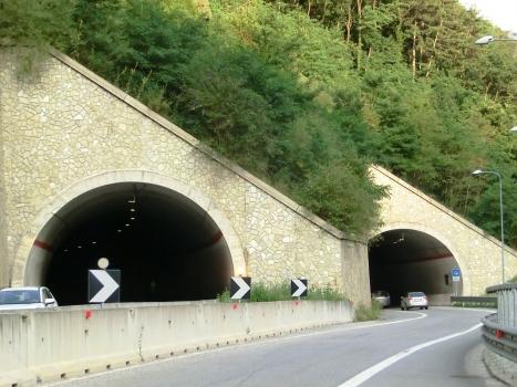 Tunnel Demo