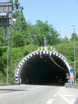 Tunnel Mario