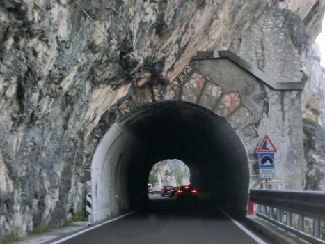 Tunnel Aurora