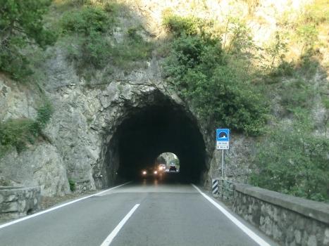 Tunnel Fauni