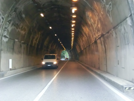 Tunnel Muse