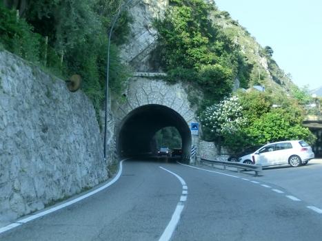 Tunnel Nani