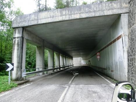 Tunnel de Culzei IV
