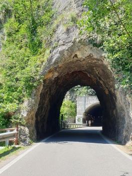Tunnel de Castro I
