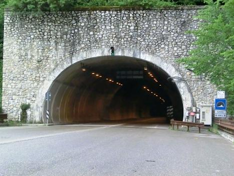 Lenna Tunnel northern portal