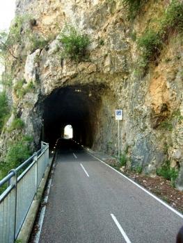 Parina 1 Tunnel northern portal