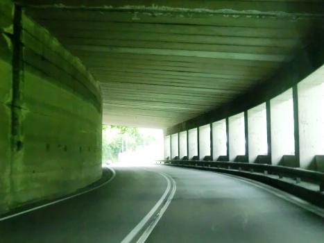 Zogno Tunnel
