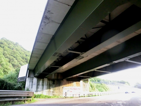 Straßenbrücke Pisogne