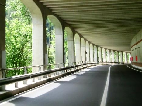 Tunnel de Monte Croce I