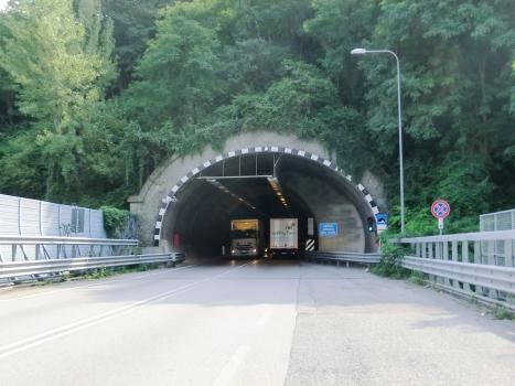 Tunnel de Montenegrone