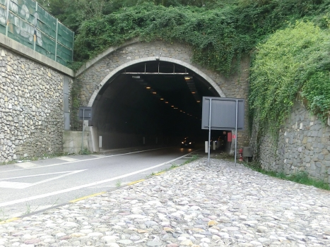 Montenegrone Tunnel exit Nembro branch northern portal