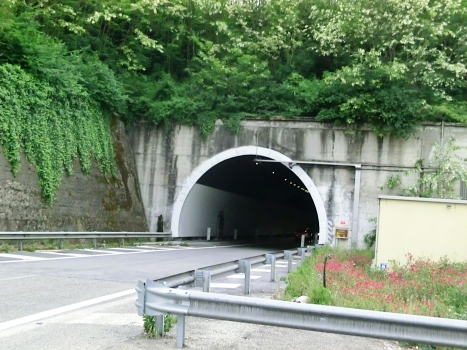 Avellola Tunnel eastboud eastern portal