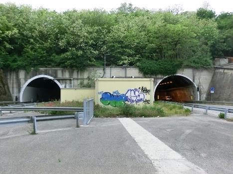 Avellola Tunnel eastern portals