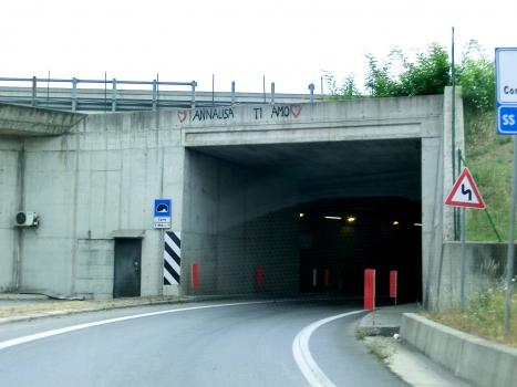 Tunnel Carle