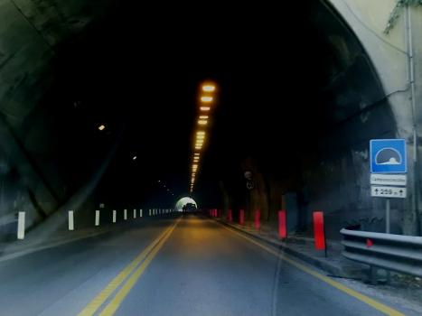 Tunnel Camponocecchio