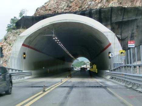 Mariani Tunnel southern portal