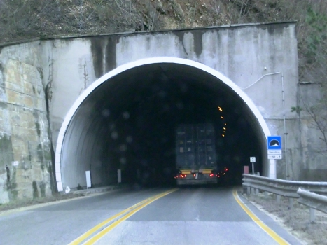 Tunnel Serafico