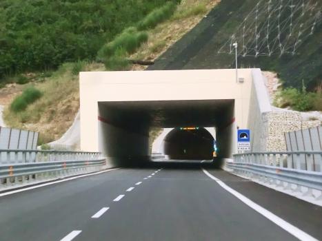 SS 77var Artificial Tunnel (2016) eastern portal