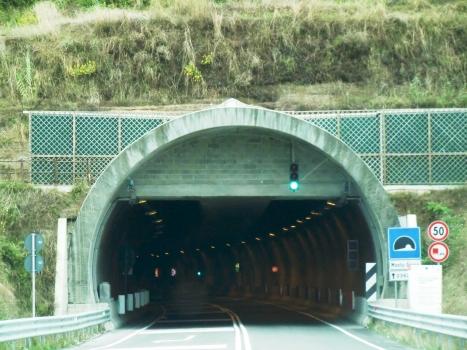 Tunnel de Monte Greco