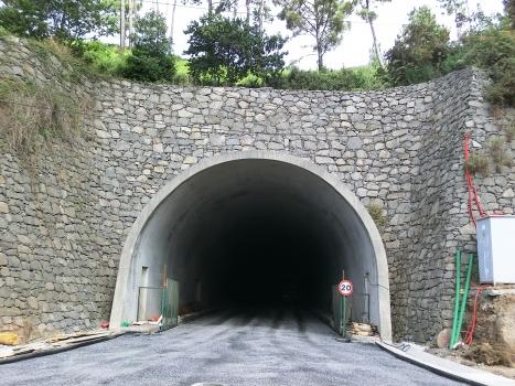 Tunnel Fajã da Ovelha