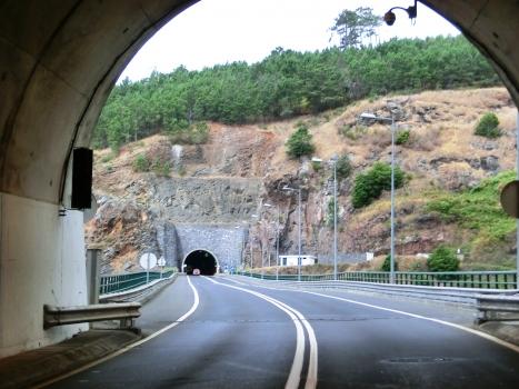 Ribeira Funda Viaduct and Jardim Pelado Tunnel eastern portal from Moinhos Tunnel northern portal