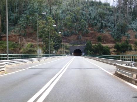 Ribeira Funda Viaduct and Moinhos Tunnel northern portal