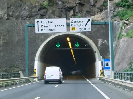 Tunnel Abegoaria West