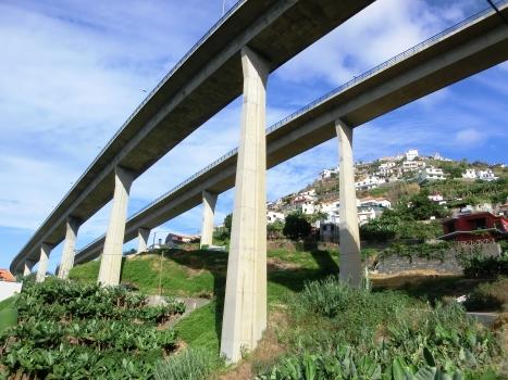Amoreira Viaduct