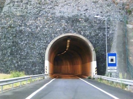 Tunnel der Ausfahrt Fazenda