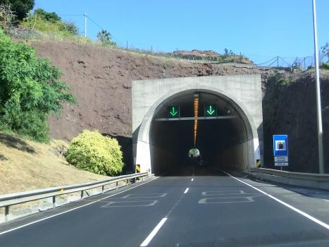 Pinheiro Grande Tunnel western portal