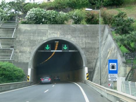 Tunnel Quinta da Palmeira