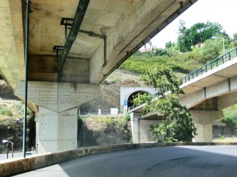 Pinheiro Grande Bridge and Pinheiro Grande Tunnel eastern portal
