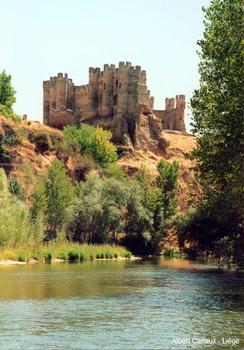 Coyanza-Burg, Valencia de Don Juan