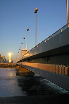 Reichsbrücke in Vienna