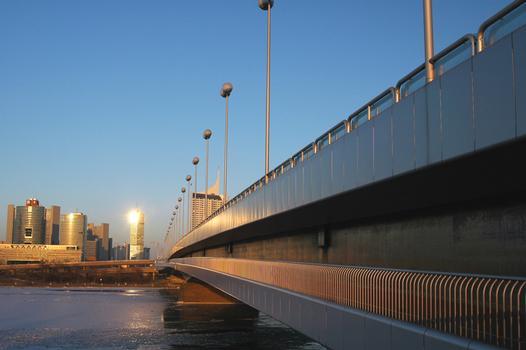 Reichsbrücke à Vienne
