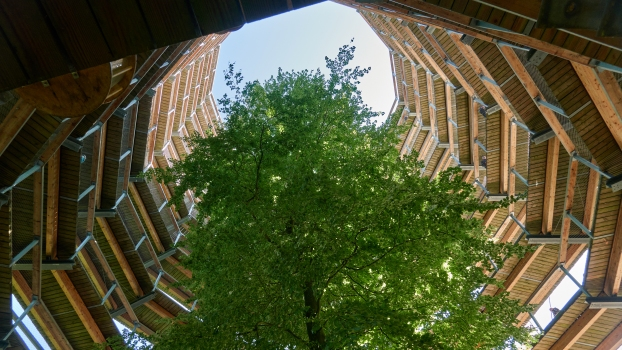 Baumwipfelpfad Naturerbe-Zentrum Rügen