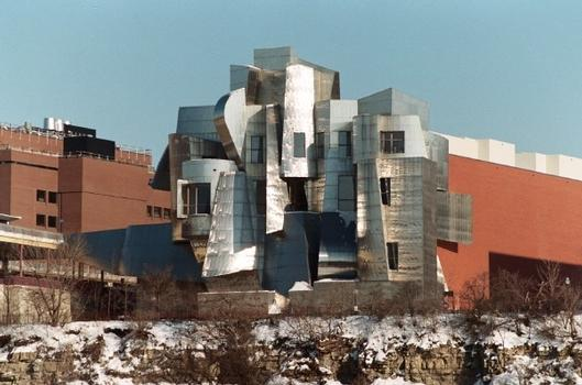 View of the Weisman Museum from across the Mississippi River