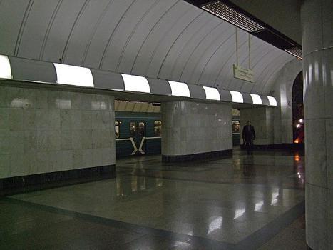 Dubrovka Metro Station