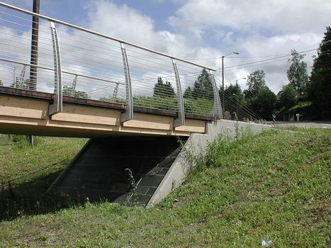 Leonardo's Bridge