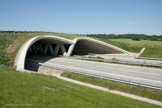 Ecoduct Over D1 Motorway near Suchdol nad Odrou