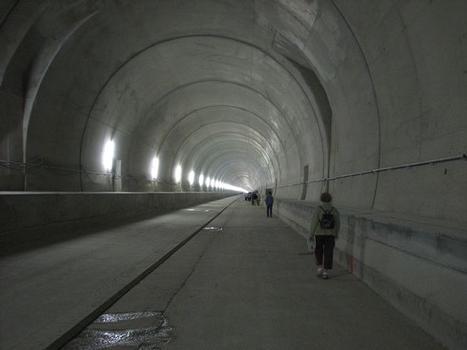 TGV Rhein-Rhone – Tunnel Chavanne