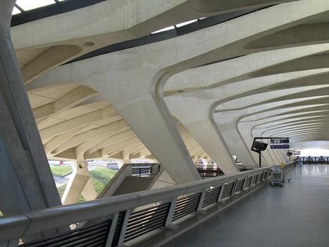 Gare de l'aéroport Lyon-Saint Exupéry