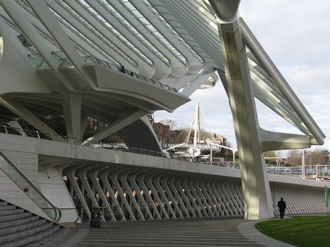 Liège-Guillemins, Gare TGV