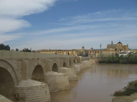 Roman Bridge in Cordoba
