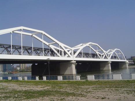 Eisenbahn-Bogenbrücke Mannheim-Ludwigshafen