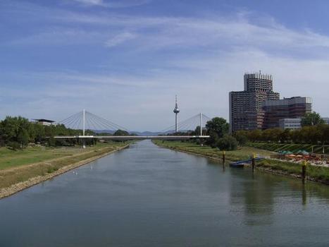 Neckarsteg beim Colani-Zentrum in Mannheim