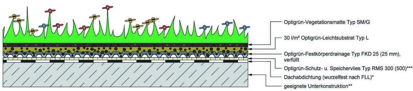 Versuchsfläche 2: Optigrün-Systemlösung Leichtdach 1